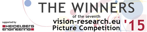 Winners of Vision Reaearch Award 2015